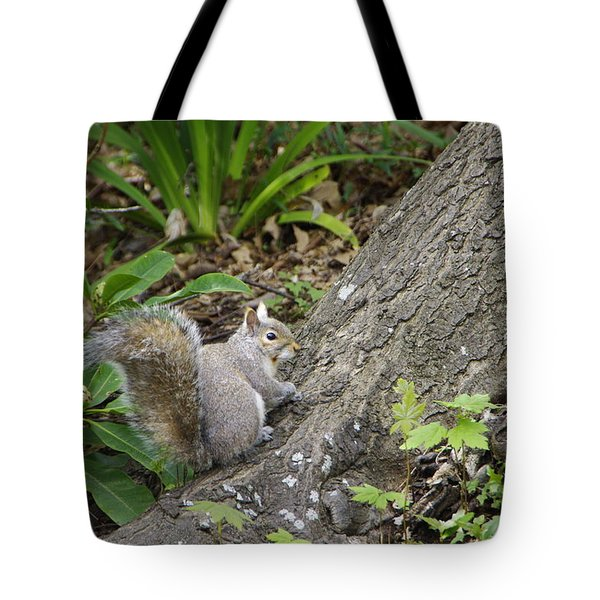 Tote Bag featuring the photograph Friendly Squirrel by Marilyn Wilson