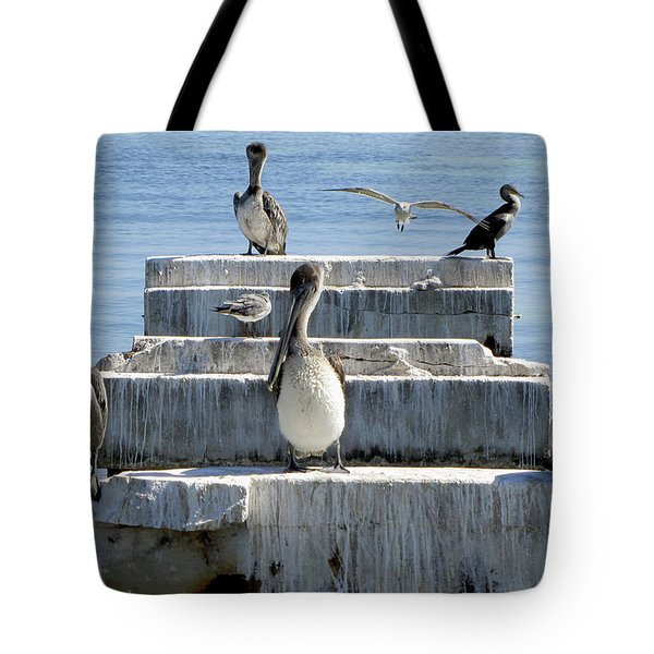 Pelican Friends Tote Bag