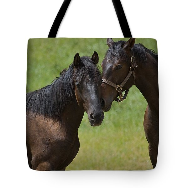 Friends Tote Bag by Michele Wright