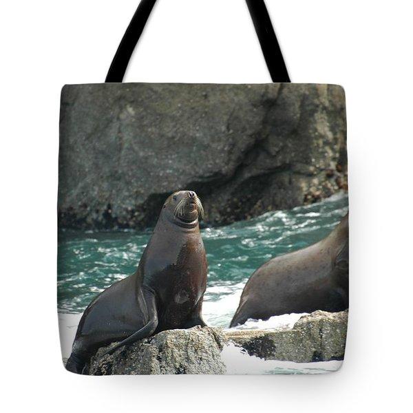 Friends In Alaska Tote Bag