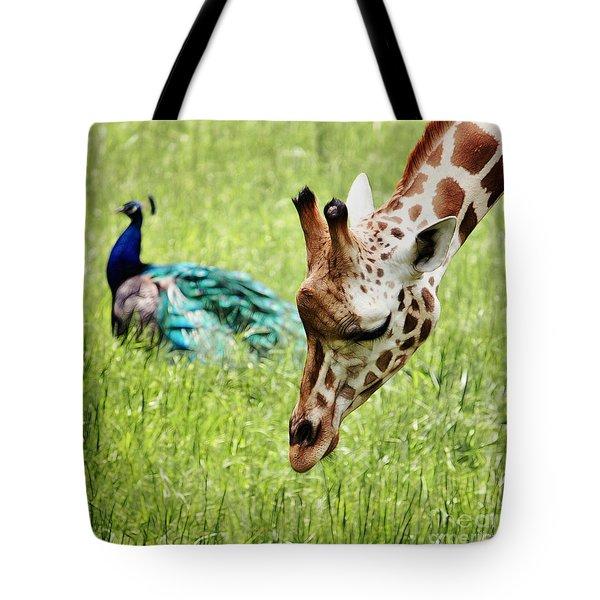 Friendship Tote Bag by Nishanth Gopinathan