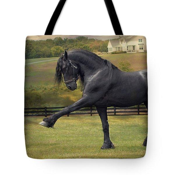 Friesian Stallion Tije Spanish Walk Tote Bag by Fran J Scott