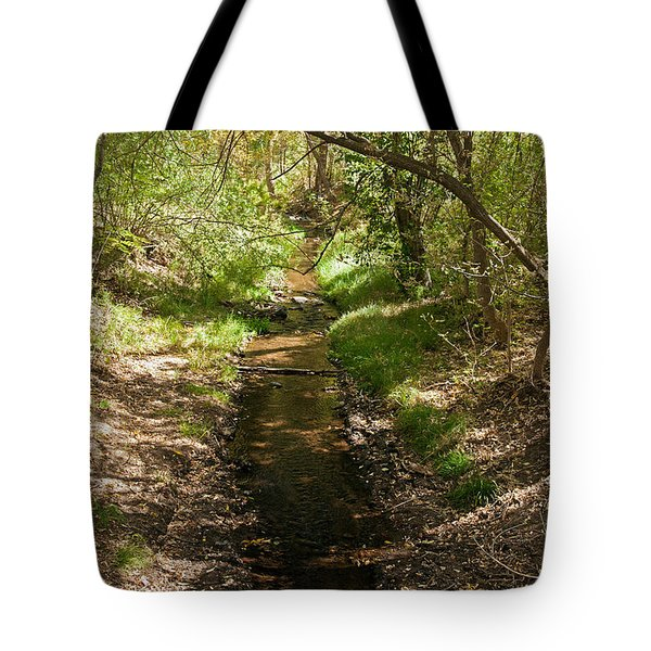 Frijole Creek Bandelier National Monument Tote Bag