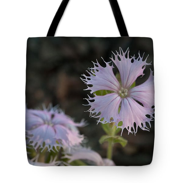 Tote Bag featuring the photograph Fringed Catchfly by Paul Rebmann