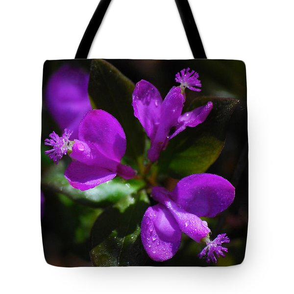 Fringed Polygala Tote Bag by Christina Rollo
