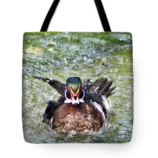 Tote Bag featuring the photograph Frisky - Wood Duck by Adam Olsen