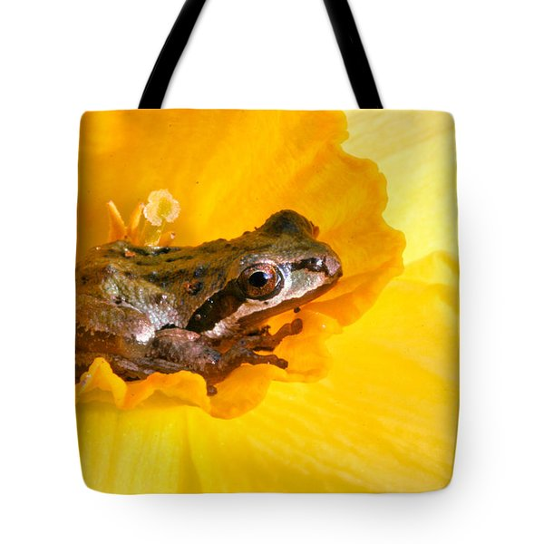 Frog And Daffodil Tote Bag by Jean Noren