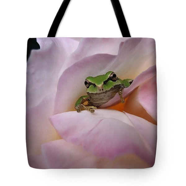 Tote Bag featuring the photograph Frog And Rose Photo 1 by Cheryl Hoyle