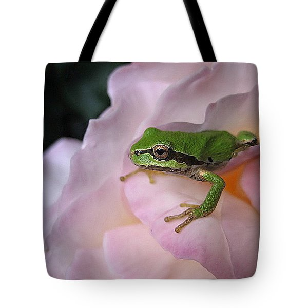 Tote Bag featuring the photograph Frog And Rose Photo 3 by Cheryl Hoyle