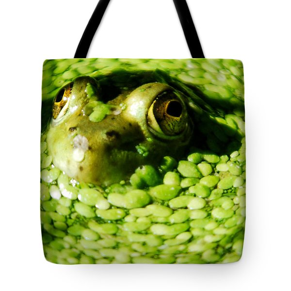 Frog Eye's Tote Bag by Optical Playground By MP Ray