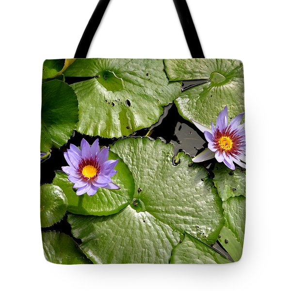 Frog Heaven Tote Bag