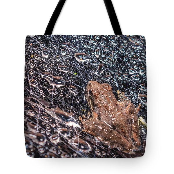 Tote Bag featuring the photograph Frog On A Web by Rob Sellers