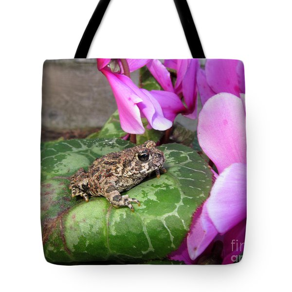Frog On Cyclamen Plant Tote Bag by Debra Thompson