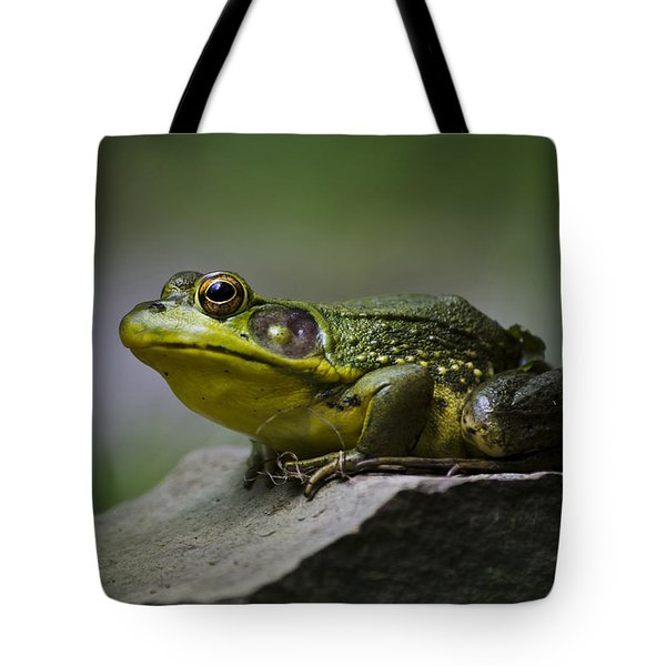 Frog Outcrop Tote Bag by Christina Rollo