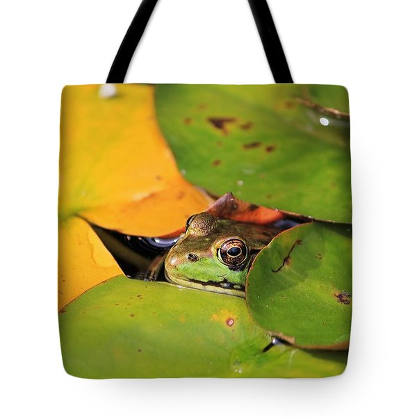 Frog Pond 3 Tote Bag
