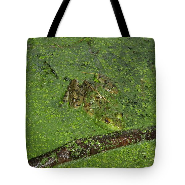 Tote Bag featuring the photograph Froggie by Robert Nickologianis