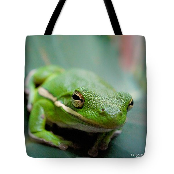 Froggy Smile Squared Tote Bag by TK Goforth