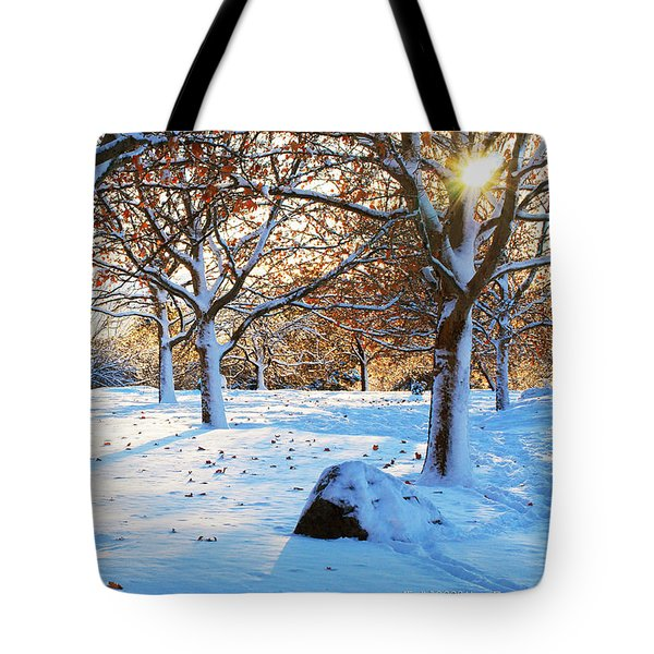 Tote Bag featuring the photograph Frolic by Janis Knight