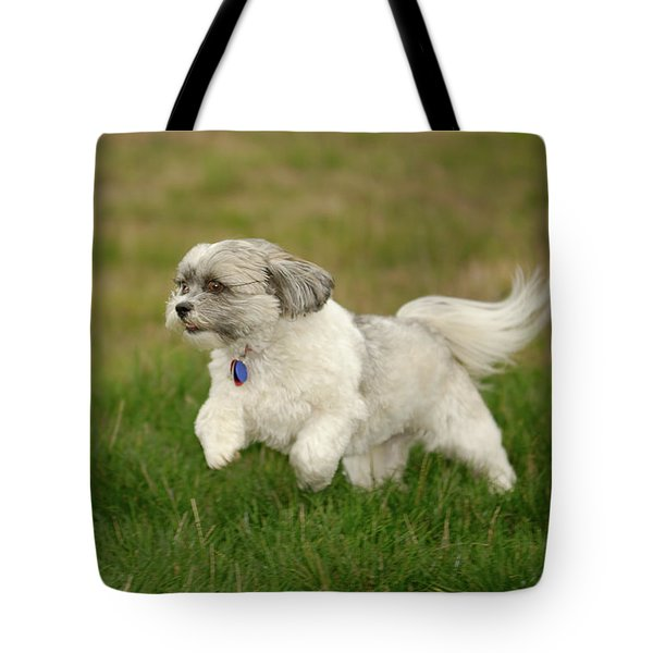 Frollic Tote Bag