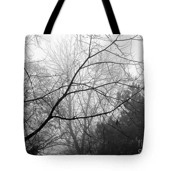 Tote Bag featuring the photograph From Hence We Come by Robyn King