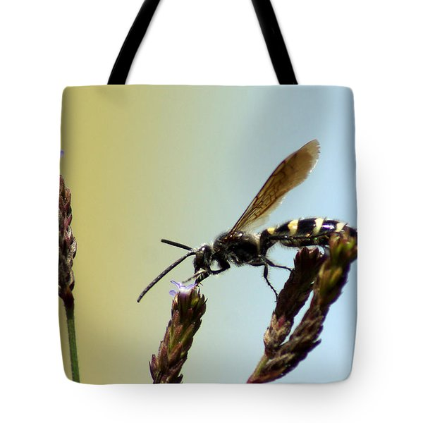 From Here To There Tote Bag by Kim Pate