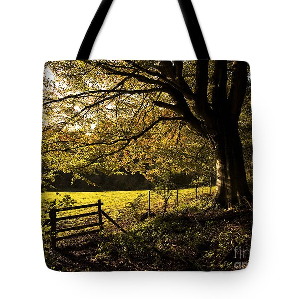 From Woods To Fields Tote Bag by Anne Gilbert