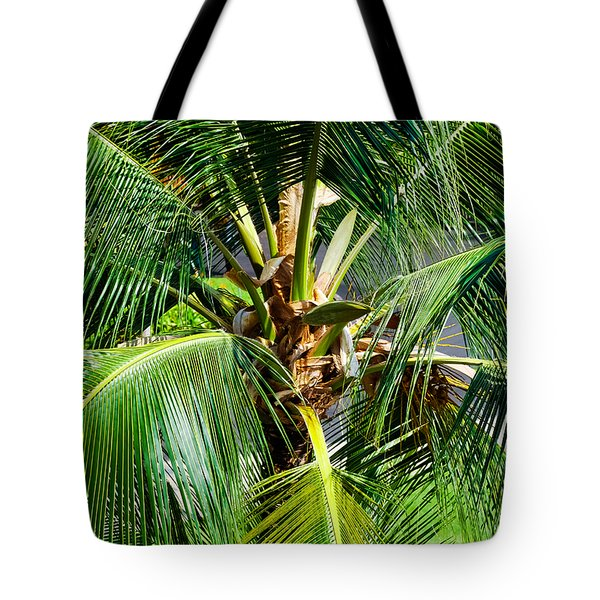 Fronds And Center Tote Bag