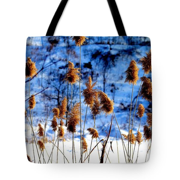 Fronds In Winter Tote Bag by Eleanor Abramson