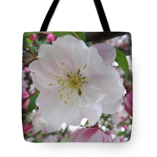 Front And Center Tote Bag by Sara  Raber