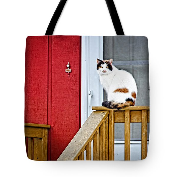 Front Porch Cat Tote Bag