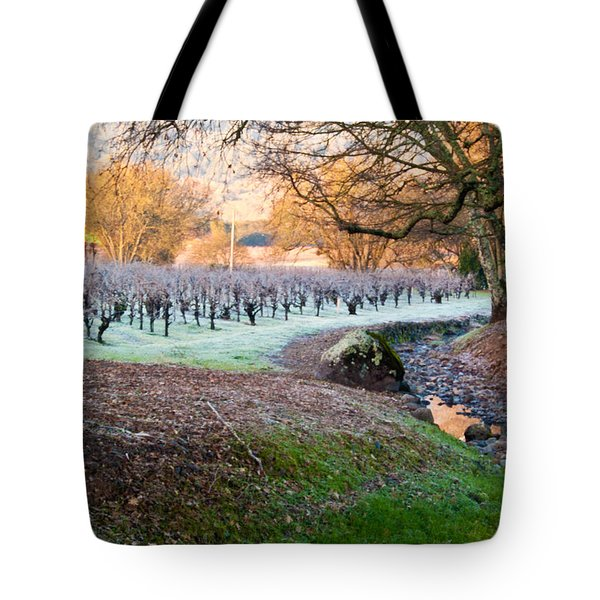 Frost In The Valley Tote Bag by Bill Gallagher
