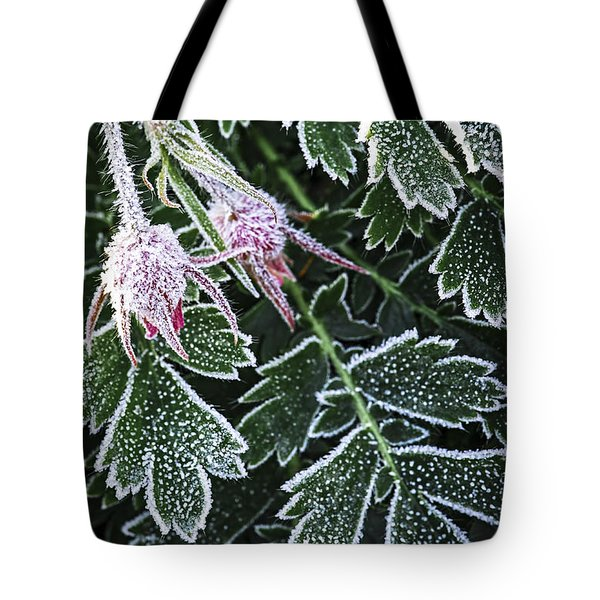 Frost On Plants In Late Fall Tote Bag