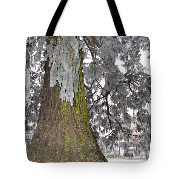 Tote Bag featuring the photograph Frost On The Leaves by Felicia Tica