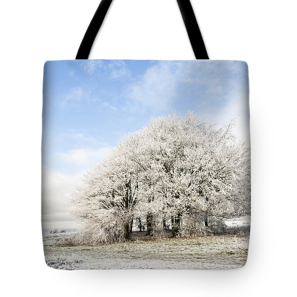 Frosted Copse Tote Bag by Anne Gilbert