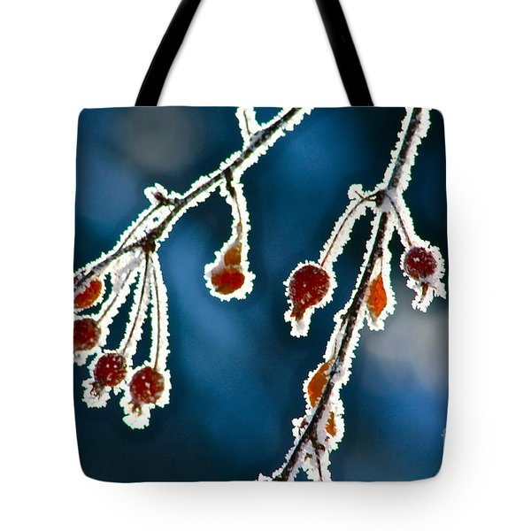 Frosted Tote Bag by Linda Bianic