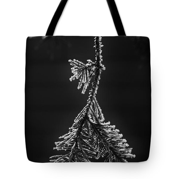 Frosted Pine Branch Tote Bag
