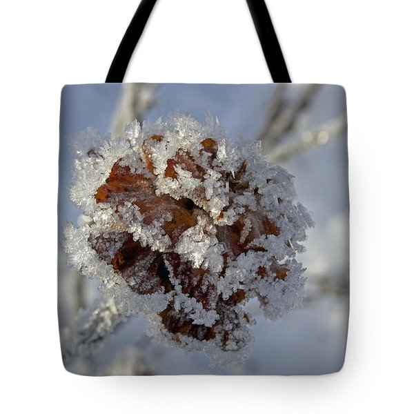 Frosted Willow Rose Tote Bag
