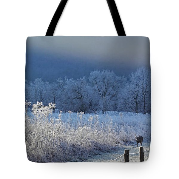 Frosty Cades Cove Shoot Tote Bag by Douglas Stucky
