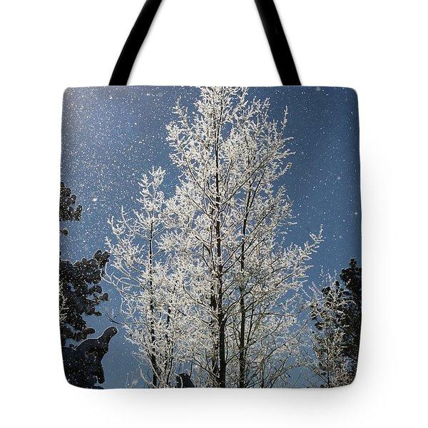Frosty Colorado Aspen Tote Bag