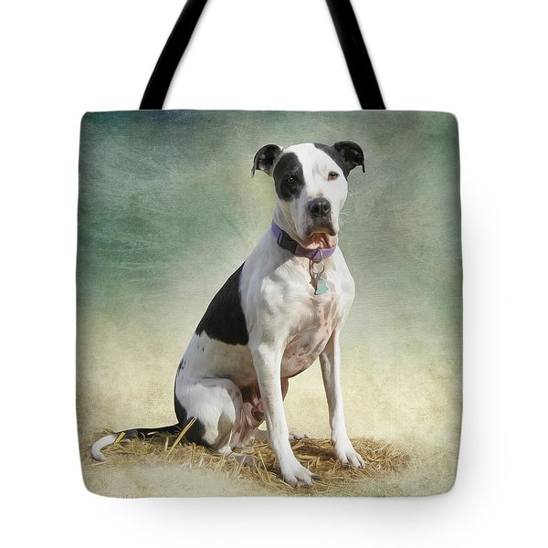 Frosty Tote Bag by Julie Wagaman