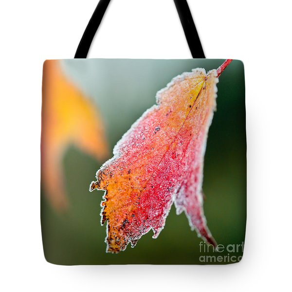 Frosty Leaf Tote Bag