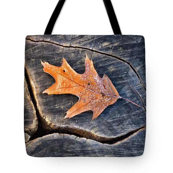 Tote Bag featuring the photograph Frosty Leaf On Tree Trunk by Gary Slawsky