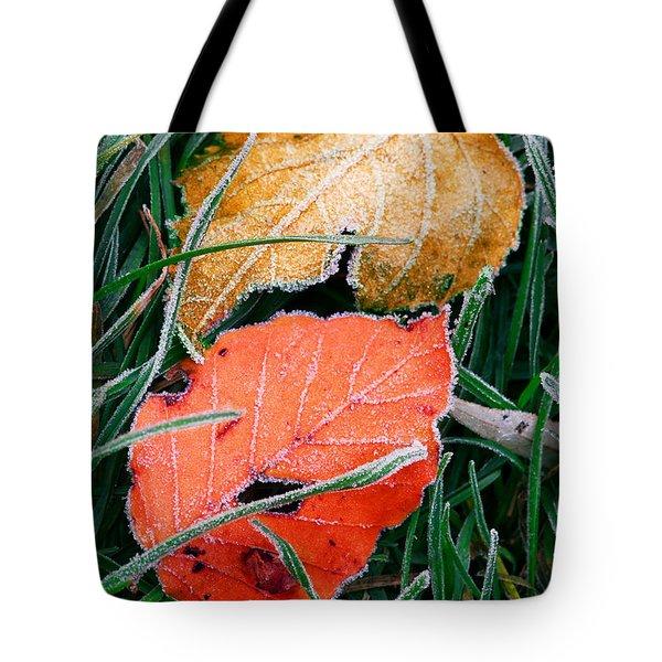 Frosty Leaves Tote Bag by Elena Elisseeva