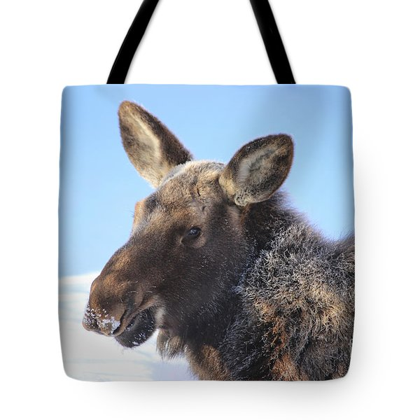 Frosty Moose Tote Bag
