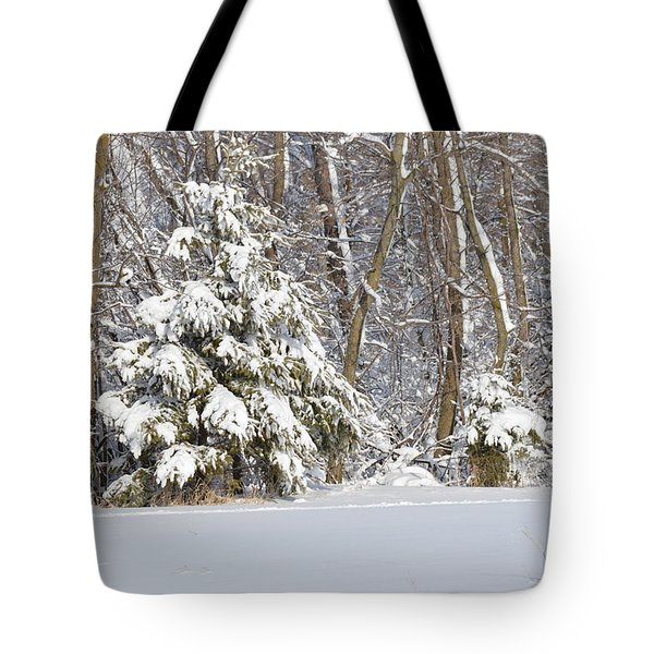 Tote Bag featuring the photograph Frosty Pine by Dacia Doroff