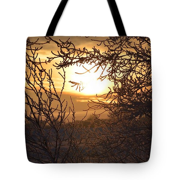 Tote Bag featuring the photograph Frosty Sunrise by Dacia Doroff