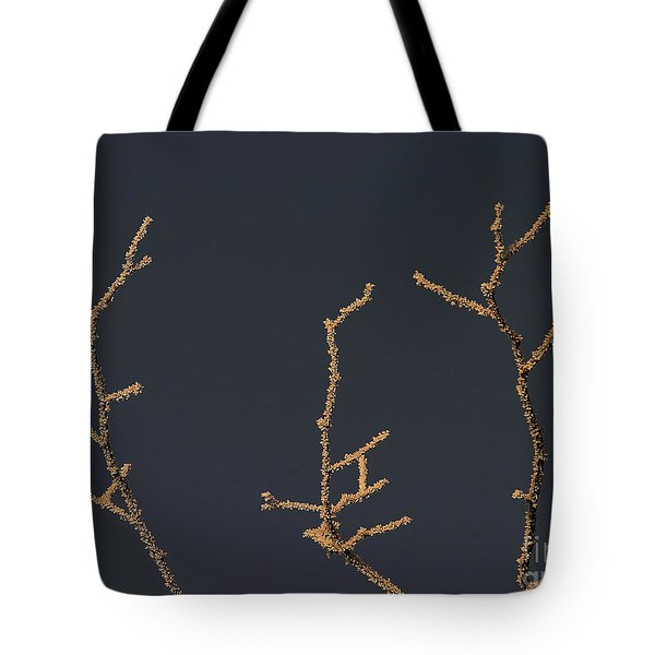 Frosty Tree Branch In Winter  Tote Bag by Odon Czintos
