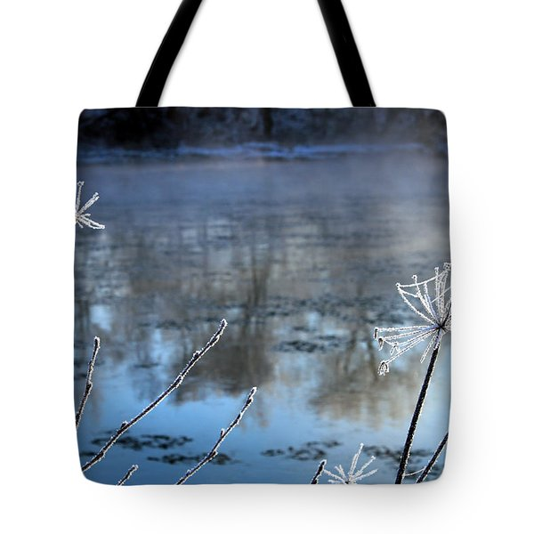 Frosty Webs And Weeds Tote Bag by Hanne Lore Koehler