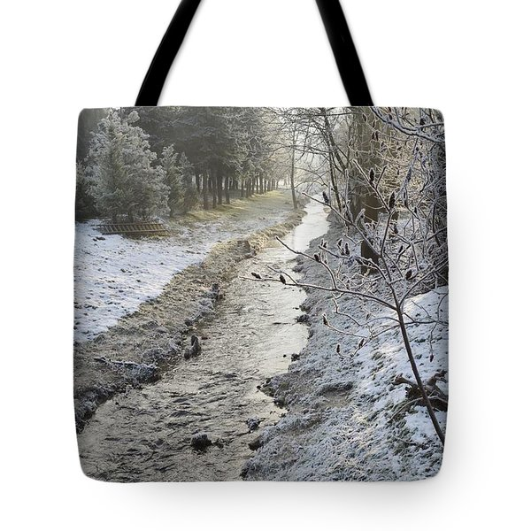 Tote Bag featuring the painting Frozen Air by Felicia Tica