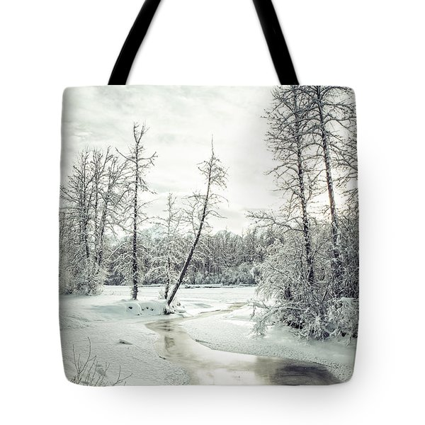 Frozen Creek At Sunset Tote Bag